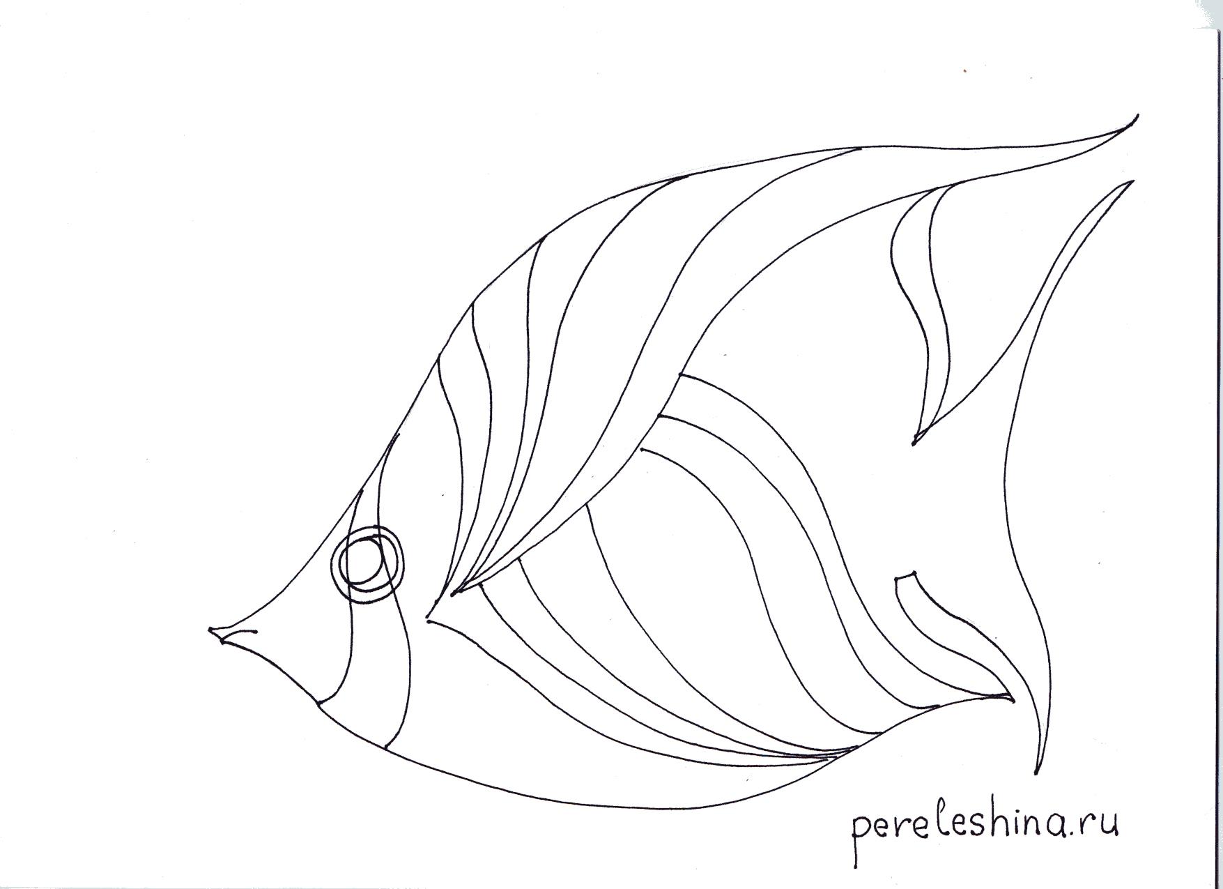картинки рыбок рисунки